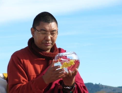 Holiday Message From Rinpoche