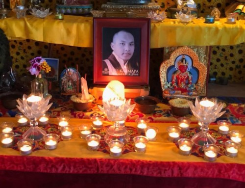 Happy Birthday to H.H. the Karmapa