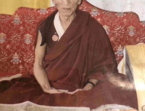 On the 20th Anniversary of Kyabje Sangye Tenzin Rinpoche